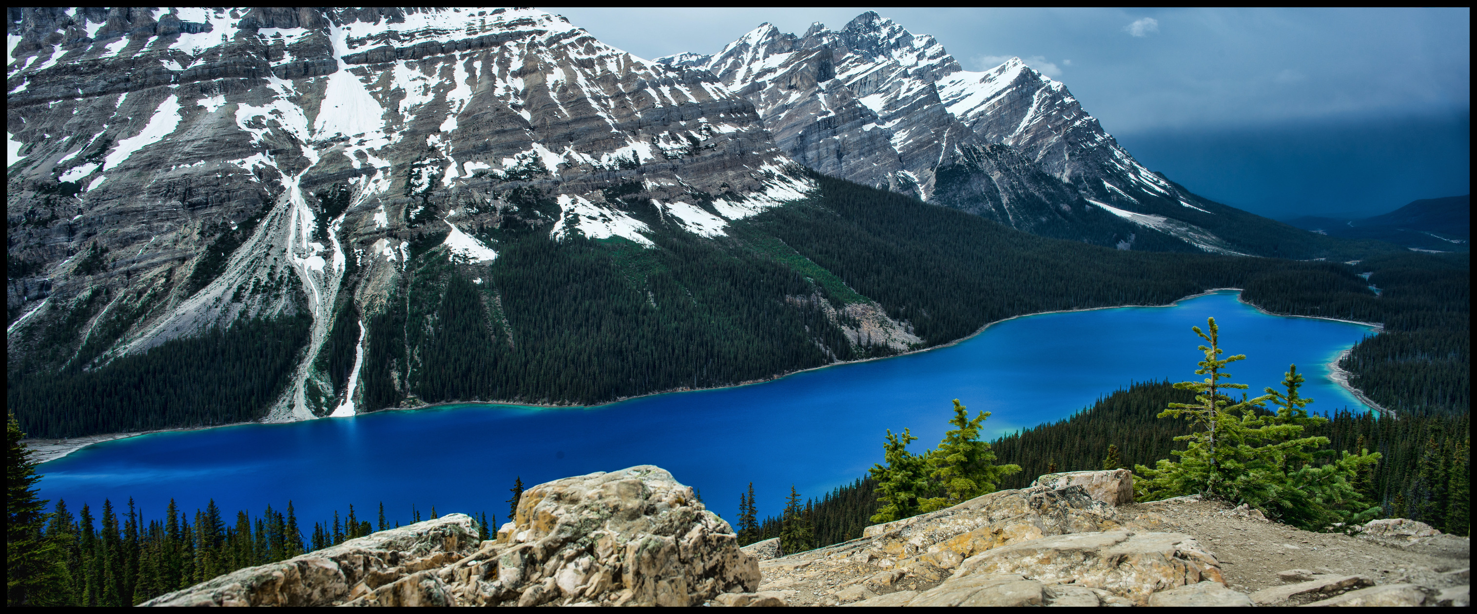 Peyto Lake spring colours in May, after a rainstorm Sony A7 / Canon FD Tilt Shift 35 2.8