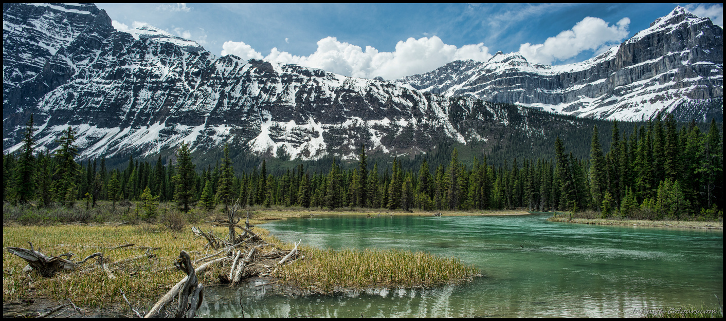 Picknick spot at Saskatchewan River Crossing, Icefields Parkway