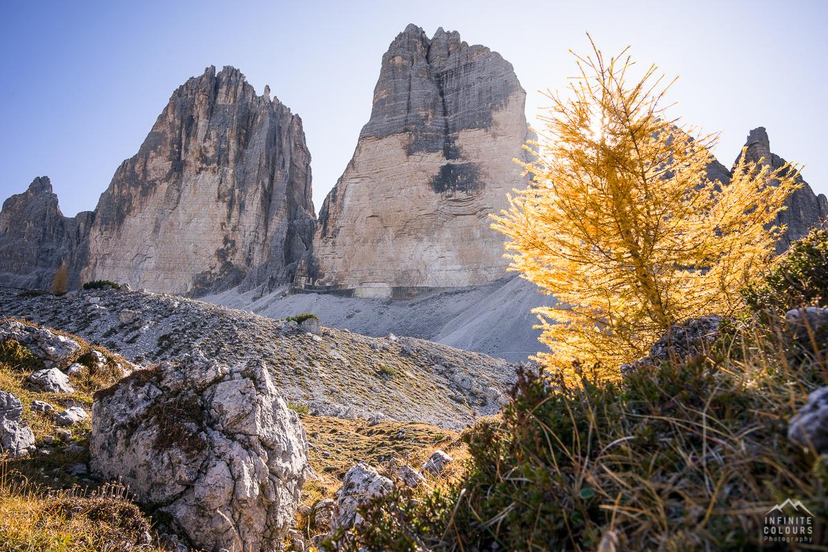 Goldener Herbst in den Dolomiten - Lärchen vor Sasso di Landro, Cima Ovest, Cima Grande - Tre Cime di Lavaredo pandscape photography gegenlich sunstars Sony A7