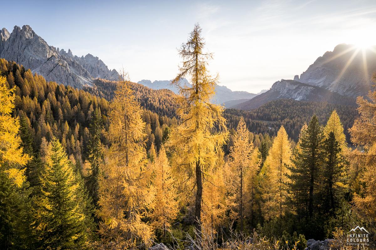 Valle Misurina + Cadin di Misurina sunset autumn larches dolomites sonnenuntergang herbst lärchen golden landschaftsfotografie dolomiten goldenes licht