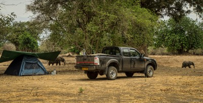 Nyamepi campsite, Sambesi, Mana PoolsMana Pools National Park, Zimbabwe