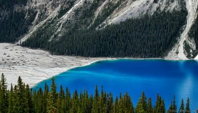 Canon FD 80-200 F4.0 Sony A7 Peyto bluePeyto Lake, Banff, Alberta, Canada photography fotografie