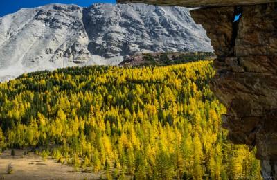 Skoki autumn colors from Myosotis Lake waterfall Skoki Lakes fall, Banff, Canada photography fotografie Sony A7 Minolta MD 35-70 3.5 macro