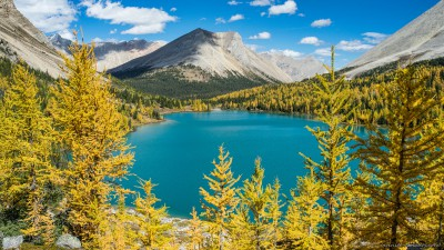 Myosotis Lake of Skoki Lakes yellow larchesBanff National Park, Canada photography fotografie Sony A7 Minolta MD 35-70 3.5 macro