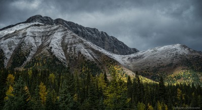 Mt. Pocaterra range / Kananaskis Highwood Pass Kananaskis autumn, Highwood Pass photography fotografie Sony A7 Minolta MD 35-70 3.5 macro