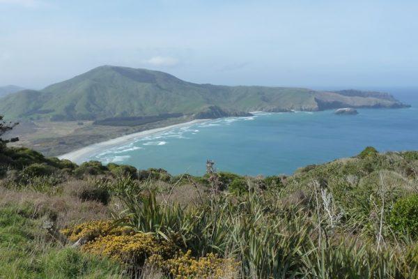 Catlins und Otago-Peninsula Coast