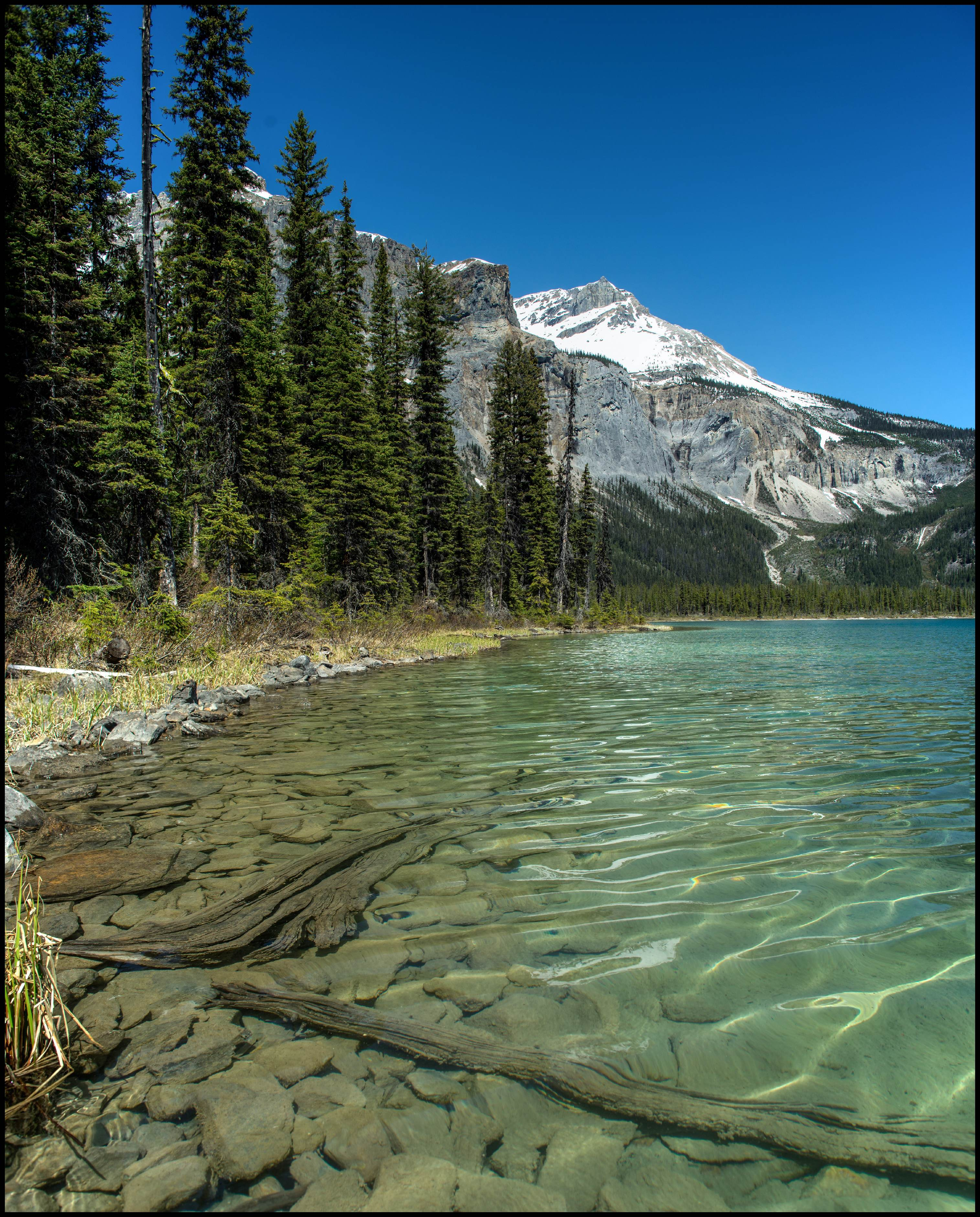 Emerald lake in Yoho National Park Sony A7 / Canon FD Tilt Shift 35 2.8