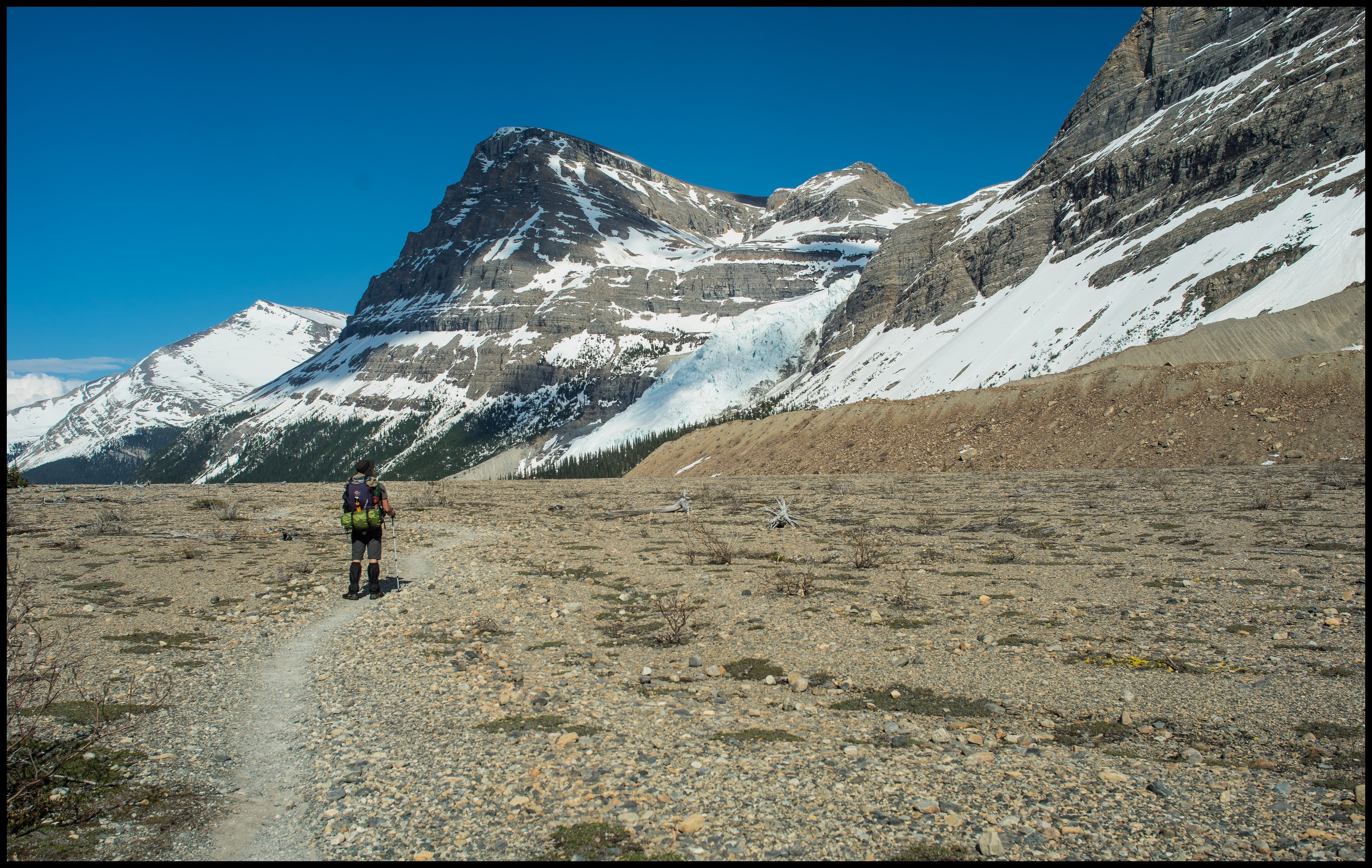 Scenery close to Marmot campsite on Berg Lake Trail Sony A7 / Canon FD Tilt Shift 35 2.8