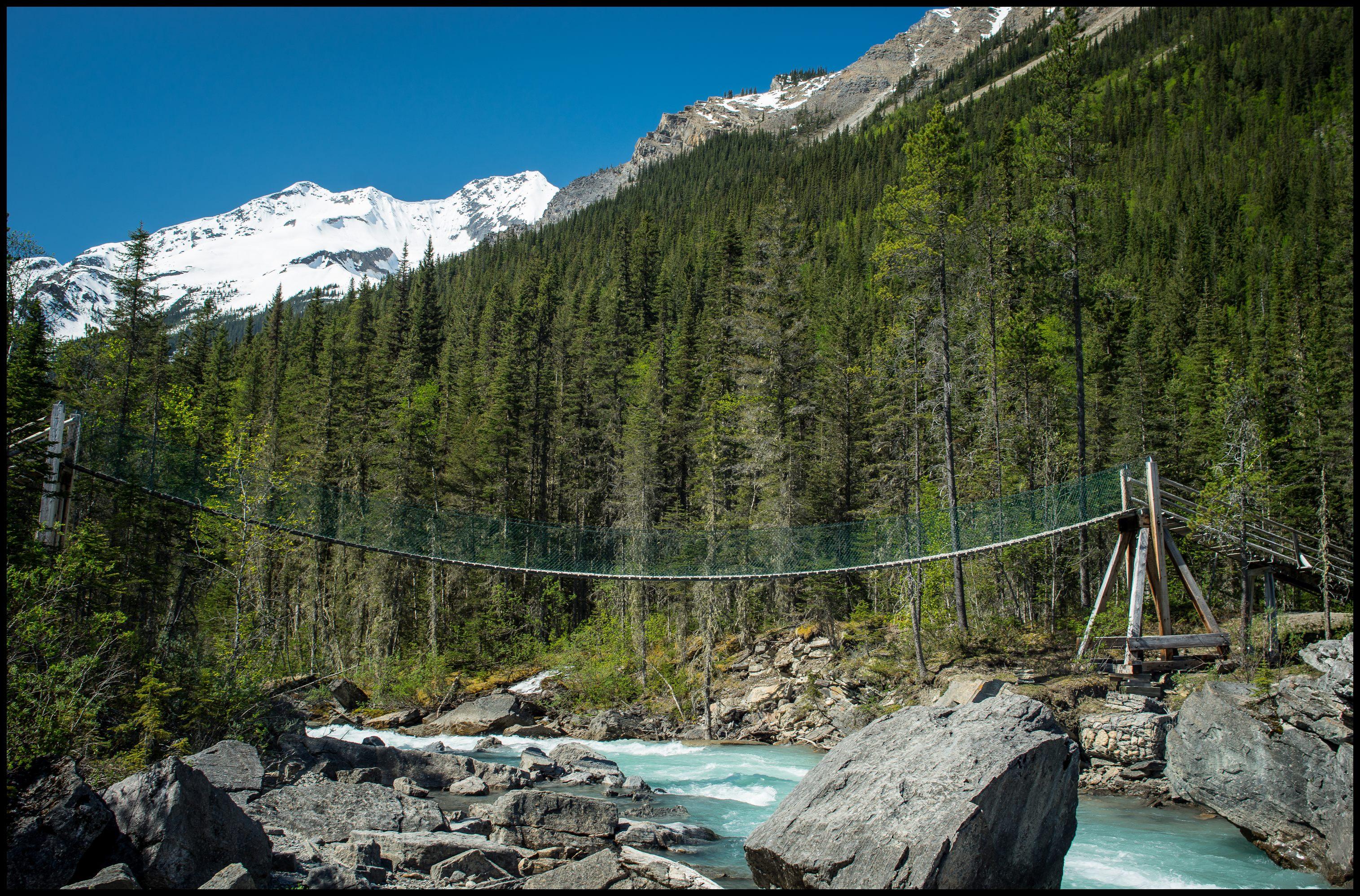 Swing bridge at Whitehorn, Berg Lake Sony A7 / Canon FD Tilt Shift 35 2.8