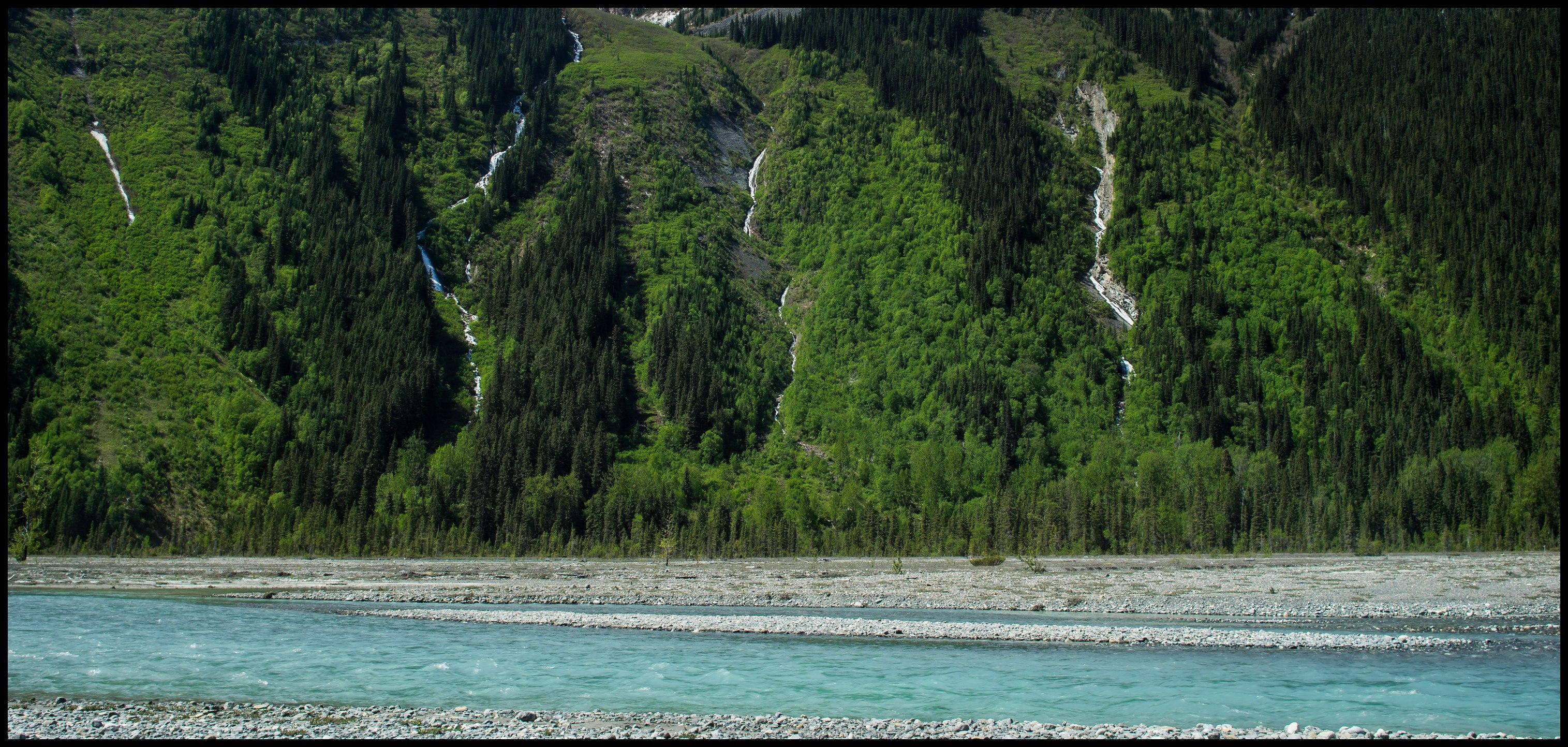 Spring scenery of Berg Lake trail Sony A7 / Canon FD Tilt Shift 35 2.8