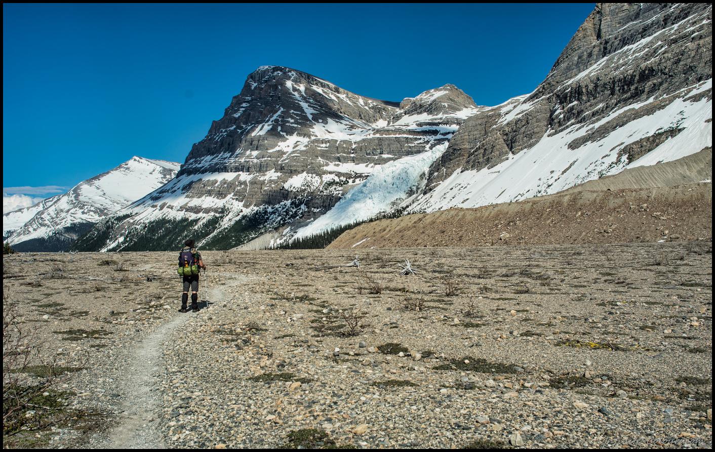 Scenery close to Marmot campsite on Berg Lake Trail