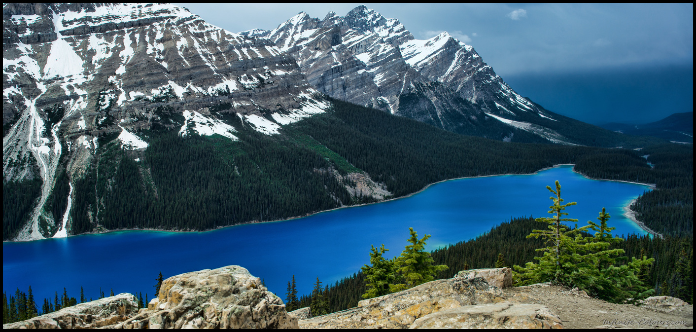 Peyto Lake spring colours in May, after a rainstorm