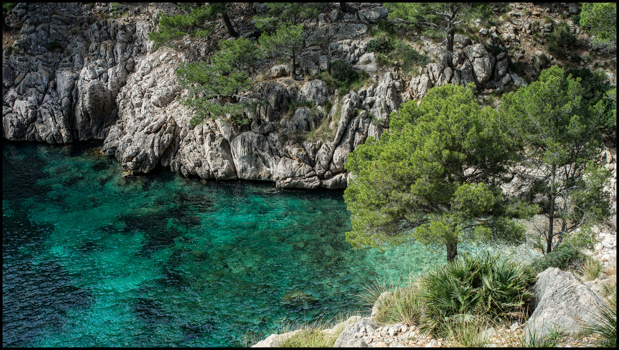 Cala Murta is a stunning little cove for snorkeling and swimming on western Formentor, Mallorca