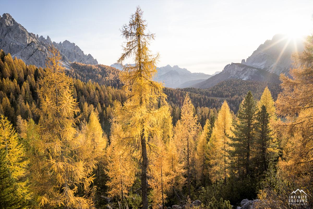 Valle Misurina + Cadin di Misurina sunset autumn larches dolomites sonnenuntergang herbst lärchen golden landschaftsfotografie Goldener Herbst in den Dolomiten