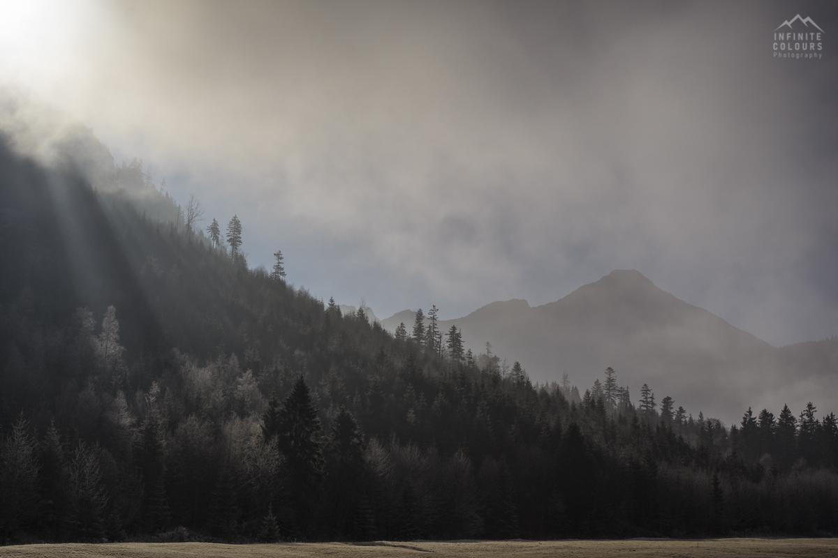 Alpen Nebelstimmung Herbstmorgen Herbst Nebel Frost
