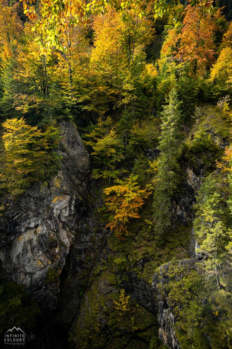 Herbst im Hintersteiner Tal über der Ostrach bei der Eisenbreche Herbstfarben Landschaftsfotografie Hintersteiner Tal Herbstlandschaft Alpen Deutschland