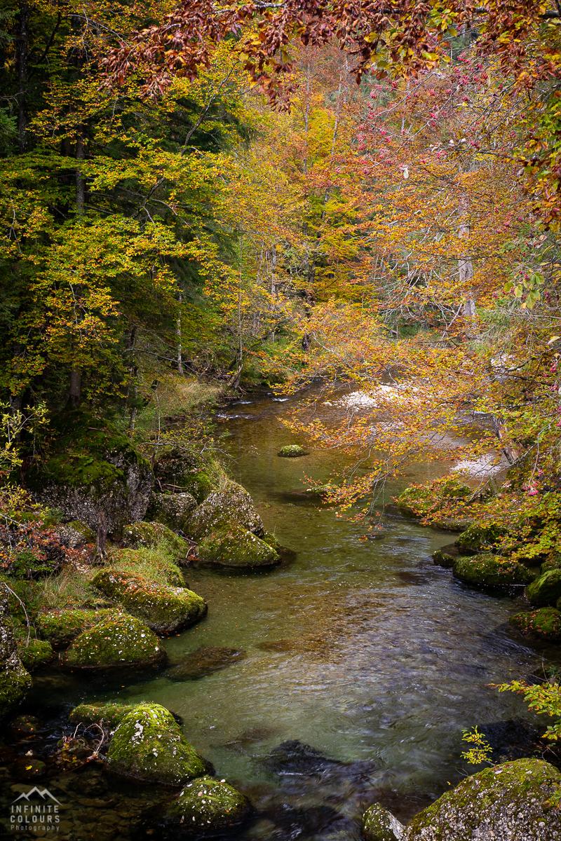 Landschaftsfotografie Allgäu Herbst Gunzesrieder Tal Herbstwald Deutschland