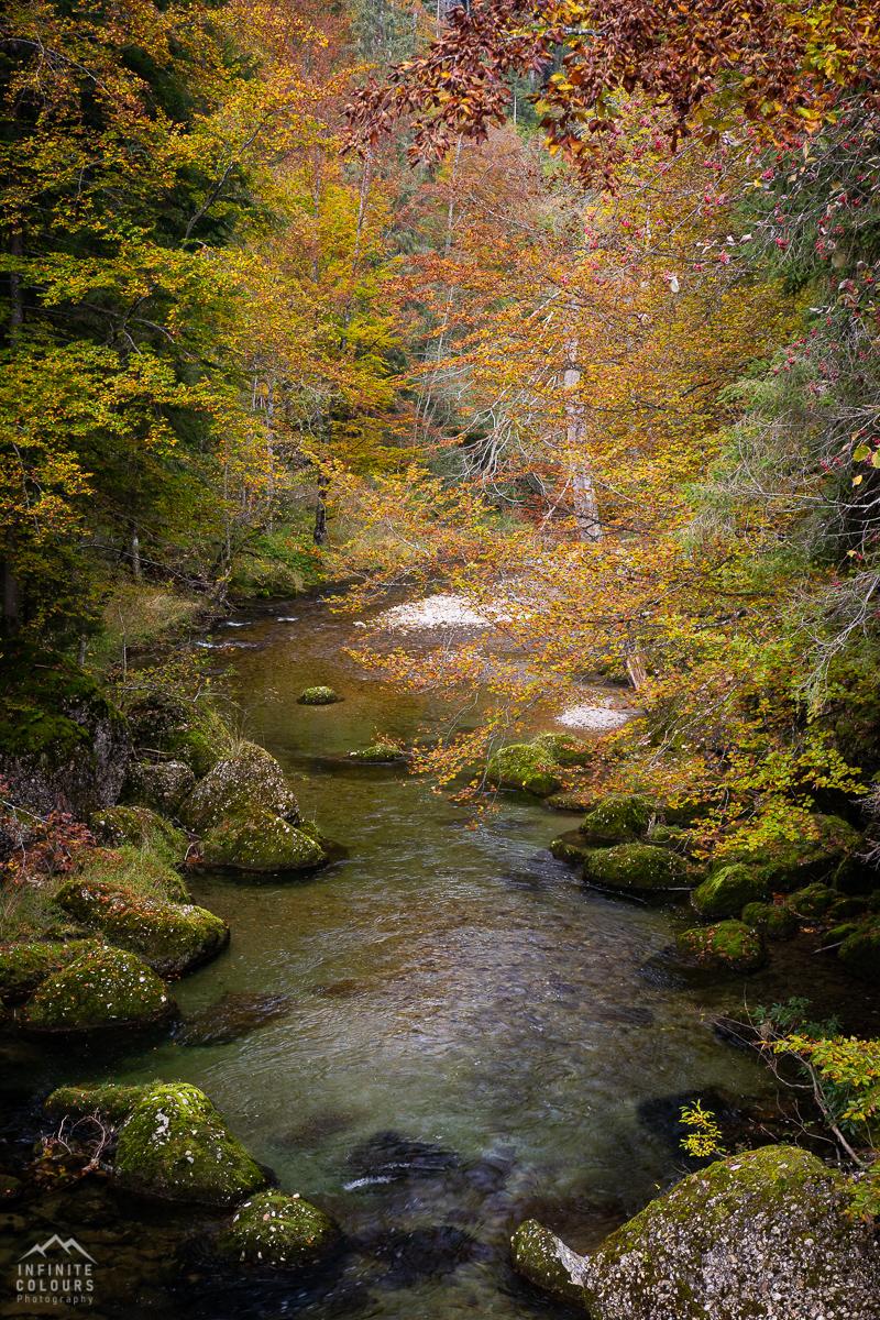 Landschaftsfotografie Allgäu Herbst Gunzesrieder Tal Herbstwald