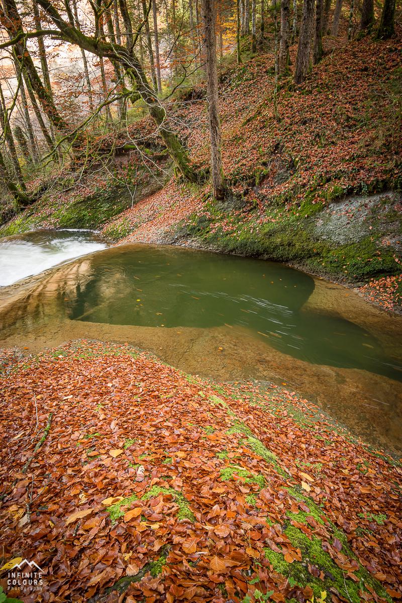 Herbst Eistobel Allgäu Naturschutzgebiet Geotop Bayern Gumpe Tobel Herbstfarben Landschaftsfotografie Voralpen Deutschland Wasserfall