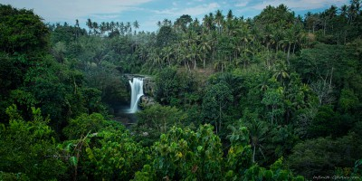 Tegenungan waterfall surrounded by balinese forest, Ubud Bali, Indonesia