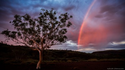 Ghost Gum rainbow, Hamersley sunsetKarijini National Park, Western Australia