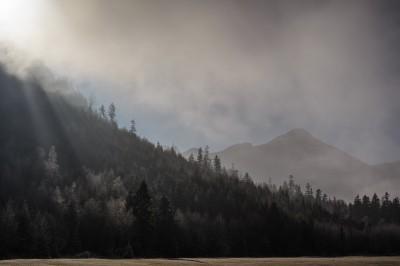 Nebel-Fotografie-Landschaft-Fog-Photography-Mountains-Retterschwang-Retterschwanger-Tal-Oberstadorf-Landschaft-Winter