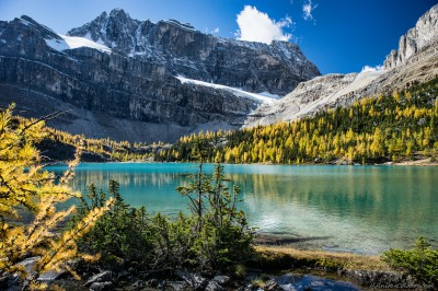 Myosotis Lake of Skoki Lakes framed by larches Banff National Park, Canada photography fotografie Sony A7 Minolta MD 35-70 3.5 macro