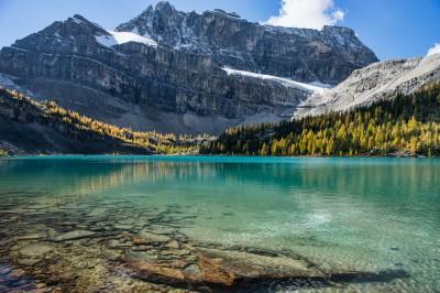 Pika Peak and Sony A7 Olympus OM 24 2.8 Myosotis LakeSkoki Lakes larches, Banff photography landscape fotografie