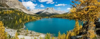 Myosotis and Skoki mountain Skoki Lakes larches, Banff National Park, Canada