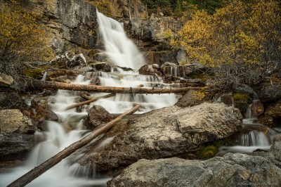 Sony A7 Minolta MD 35-75 3.5 macro Tangle Creek autumn cloakTangle Creek Falls, Icefields Parkway photography fotografie