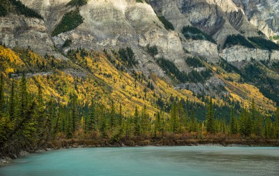 Sony A7 Minolta MD 35-75 3.5 macro Rampart Creek / Wilson wallNorth Saskatchewan, Rampart Creek photography landscape fotografie