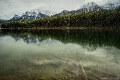Sony A7 Olympus OM 24 2.8 Herbert Lake tranquilityBanff National Park, Canada photography landscape fotografie