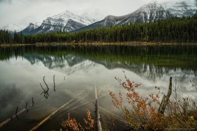 Sony A7 Minolta MD 35-75 3.5 macro Herbert autumn morningHerbert Lake, Banff photography landscape fotografie