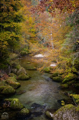 Gunzesried Herbst Landschaftsfotografie Herbst Allgäu