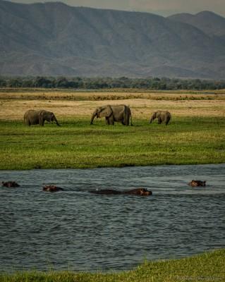 Mana Magic Zambezi Escarpment